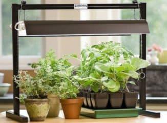 Биолампа люминесцентного типа для растений