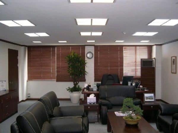 Светильники с КЛЛ в офисе
