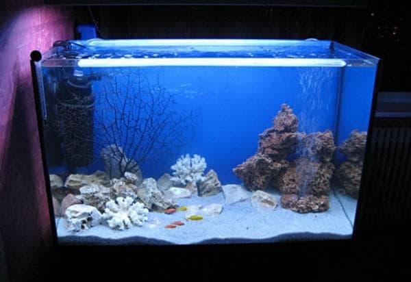 Диодная лампа для морского аквариума