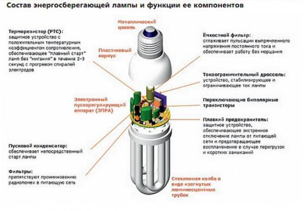 Строение лампочки энергосберегающей