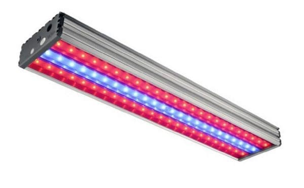 Светильник для теплиц Фокус УСС 120 БИО